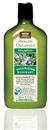 rosemary-volumizing-shampoos-png