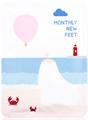 Package Monthly New Feet Hámlasztó Lábmaszk