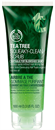 the-body-shop-tea-tree-squeaky-clean-scrub-png