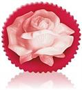 bulgarian-rose-rose-fantasy-szappan---rose-blossoms9-png