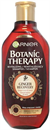 garnier-botanic-therapy-ginger-recovery-sampons9-png