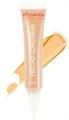 Freedom Makeup Pro HD Longwear Corrector