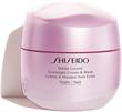 Shiseido Overnight Cream & Mask