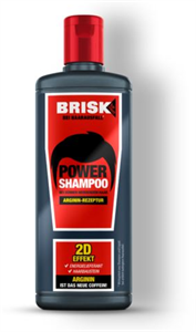 Brisk Power Shampoo