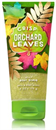 crisp-orchard-leaves-jelly-body-scrubs9-png