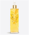 Women's Secret Beach Please Paradise Body Mist