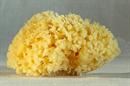 cosmio-honeycomb-tengeri-szivacss9-png