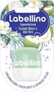 labellino-coconut-water-aloe-vera-ajakapolos9-png