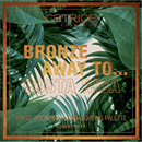 catrice-bronze-away-to-baked-bronzing-highlighting-palettas-jpg