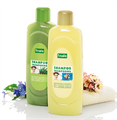 Finale Shampoo With Green Herb Extracts