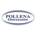 Pollena