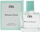 zara-mimosa-cloud3s9-png