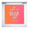 Essence Blush Up! Pirosító