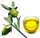 naturkence-bio-jojoba-olajs-png