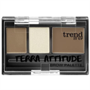 trend-it-up-terra-attitude-brow-palettes-jpg