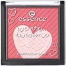 essence-multicolour-blushs9-png