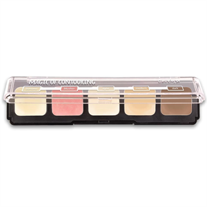 Lovely Magic of Contouring Paletta