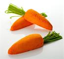 the-carrot-habfurdo-jpg