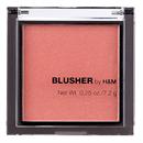 h-m-blusher1-png