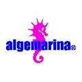 Algemarina