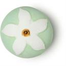 lush-jasmine-flower-furdobombas-jpg