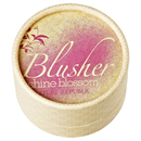 nature-republic-shine-blossom-blusher-jpg