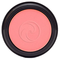 Gabriel Cosmetics Inc. Blush