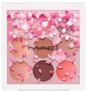mac-eyeshadow-x-9-kabuki-doll1s9-png