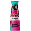Balea Young Raub Katze Tusfürdő