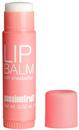 H&M Lip Balm Passionfruit