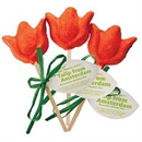 lush-tulip-from-amsterdam1s-jpg