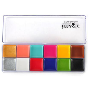 eBay Imagic Professional Cosmetics 12 Flash Color Case