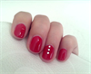 Shellac Wildfire