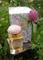 2900.- Aerin Lauder Lilac Path EDP