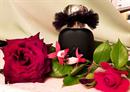 Fújós! Les Parfums de Rosine Ballerina No 3
