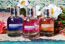 Avon Collections Violeta EDT+sok más finomság:)