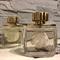 Lalique Pour Homme Equus fújósok