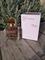 Maison Francis Kurkdjian Gentle Fluidity Gold