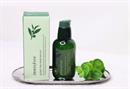 Innisfree The Green Tea Seed Serum