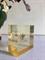 Shiseido Zen kupak
